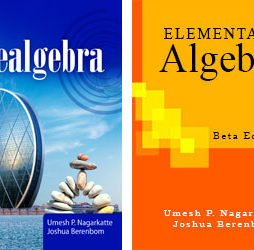 Prealgebra & Elementary Algebra (Both Books) 1